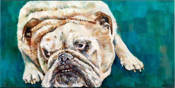 Baylee Bulldog