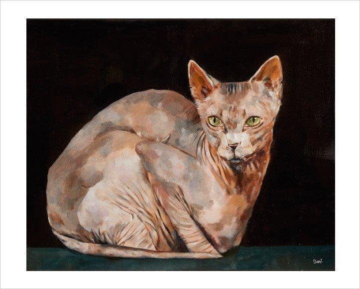 Sphynx Cat 'Limited Edition Print'